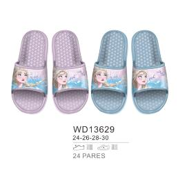 WD13629